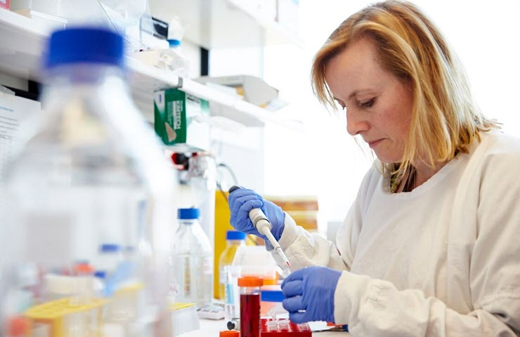 A Researcher at the Peter MacCallum Cancer Foundation